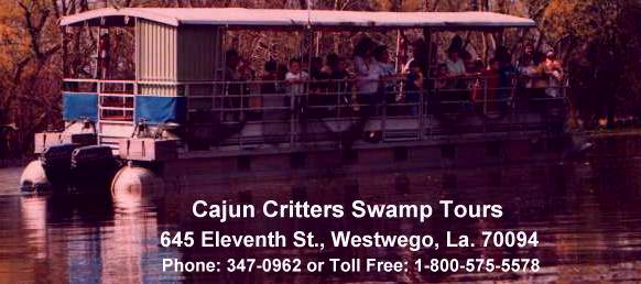 Cajun Critters Tours is located just outside New Orleans in Westwego, La.; our address is 645 11 th St. For more info, call us at 504-347-0962 or 504-341-7238. If calling within the USA, our toll free long distance number is 1-800-575-5578.
